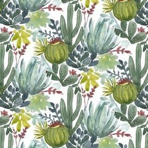 Cactus Bunch