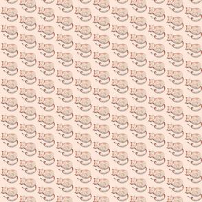 Nap time Small (Peach Tart)