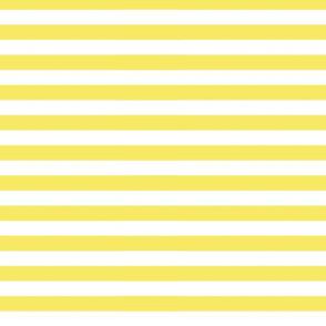 Yellow Horizontal Stripes