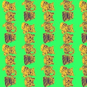 Kitties Border Green