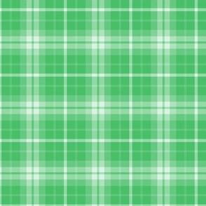 plaid green 1