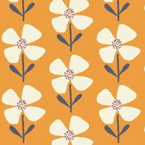 meadow beauty butternut