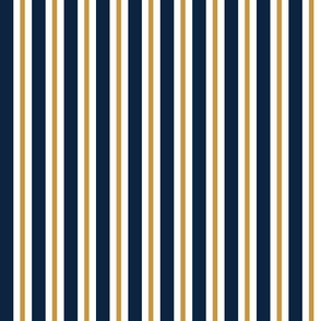 Blue and gold Team color Stripe