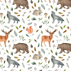 forest animals team less