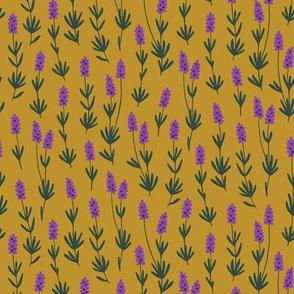 Lavender herb (ochre)