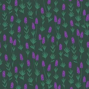 Lavender herb (dark green)