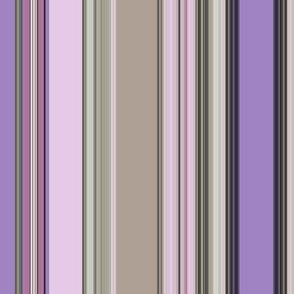 Sugarplum fairies dreams/ stripe