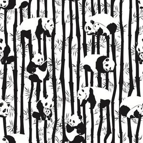 Panda2011