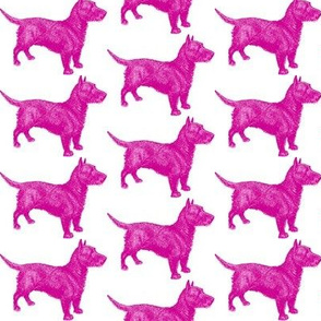 Emily Haddyr Presents Royal Dog Party ~ Quick Walk 4 ~ Comtesse
