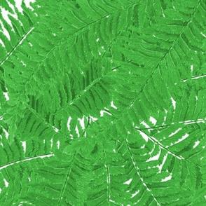 Tropical Fern ~ Jungle Green