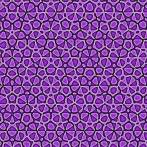 Mad purple starfish