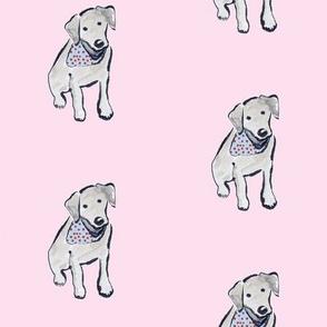 Black Labrador Puppy Cherry Bandana Pink