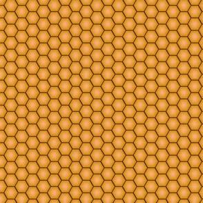 Honey filled honeycomb