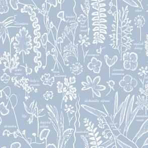 Collectors Garden blue w text lg