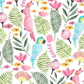 Summer tropical parrots