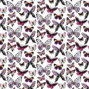 Butterfly Bitty Print