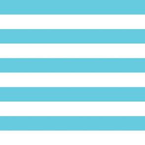 wide stripes robins egg blue