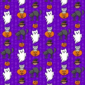 Halloween Cats Pattern Purple