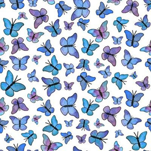 Dreaming Butterflies on white