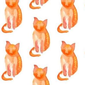 Orange Kitty Watercolor