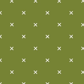 X // Pantone 165-8