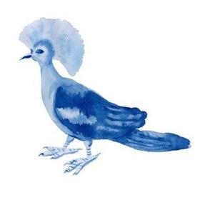 Watercolor paradise bird in blue