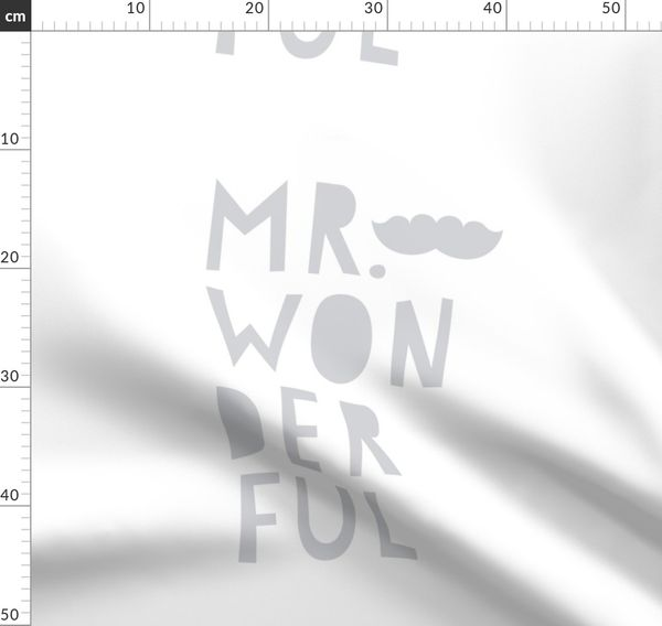 Mr wonderful wallpaper