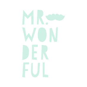 mr. wonderful mint light mod baby » plush + pillows // fat quarter