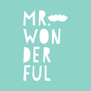 mr. wonderful white on mint mod baby » plush + pillows // fat quarter