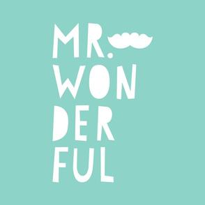 mr. wonderful white on mint mod baby » plush + pillows // fat quarter