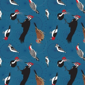 North American Woodpeckers Blue