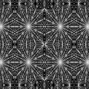 spiderlace