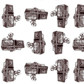 Vintage Cameras - White Background