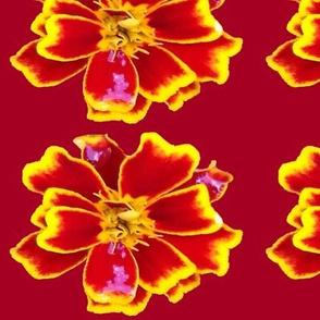 Citrine Red Peaches Yellow Mahogany-Fabrics Projects