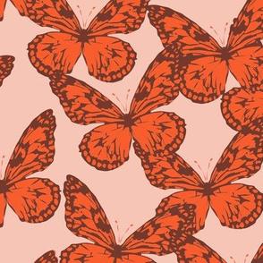 bebe_buttefly_orange