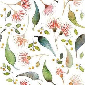 Eucalyptus scatter - watercolour