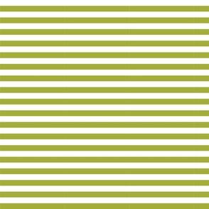 334. Striped Olive