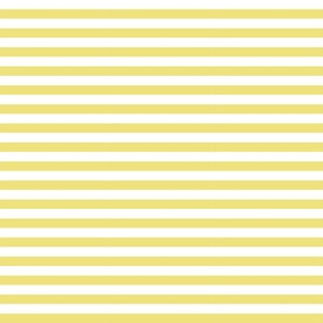 344. Striped Yellow
