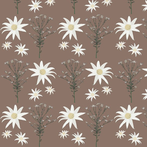 2941 Flannel_Flower#1 -Cocoa