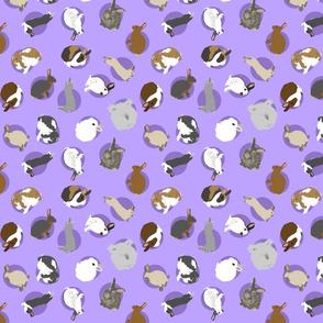 Tiny assorted rabbits - purple
