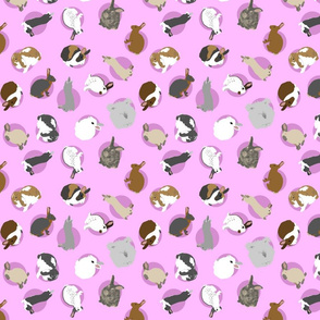 Tiny assorted rabbits - pink