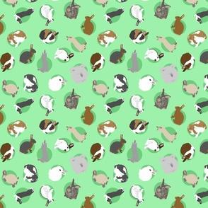 Tiny assorted rabbits - green