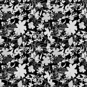 Black Grey Garden Meadow
