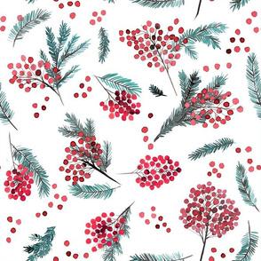 Christmas watercolor berries