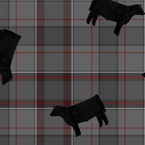 Black Steers on Grey & Red Plaid