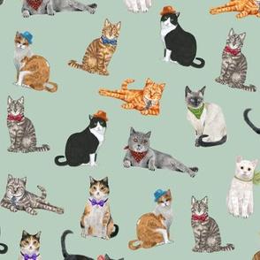Dapper Cats