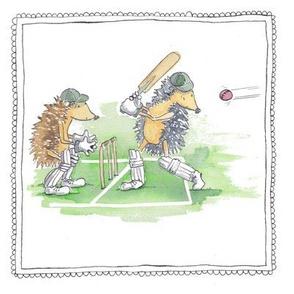 hedgehog cricket