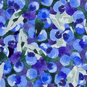 Blue_blue_blueberry_harvest_watercolor