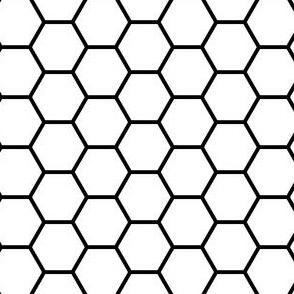00585355 : R6V : black on white