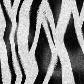 Zebra_Skin